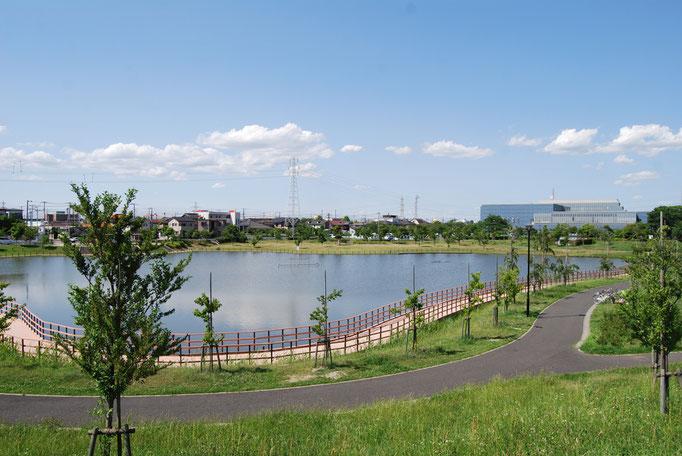 広い池の周りは遊歩道で囲まれ、散策には最適です。