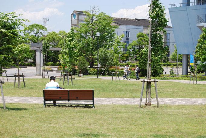 中央図書館からすぐ目の前に開ける広い芝生の広場で、思い思いの時間をお過ごしください。
