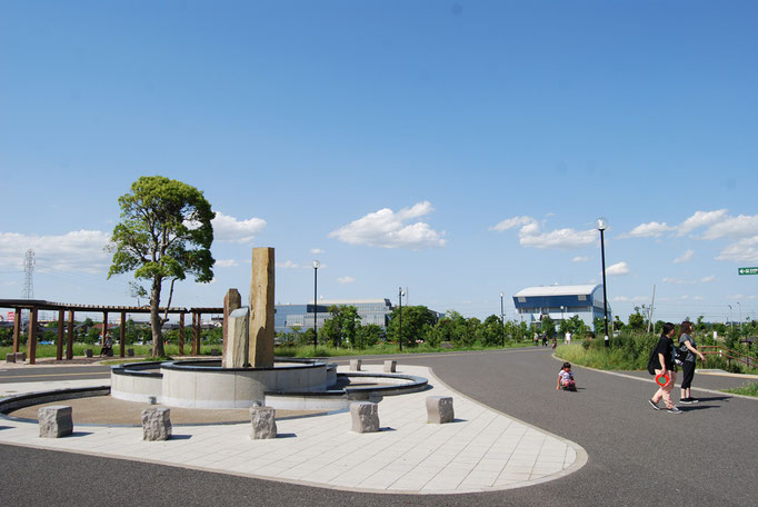 芝生広場や修景池を横切るような路です。公園全体をゆっくりお散歩するコースに最適です。