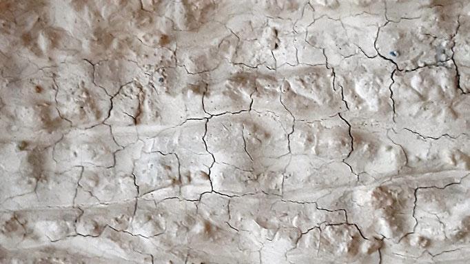 detalle de erosion en bardenas 14