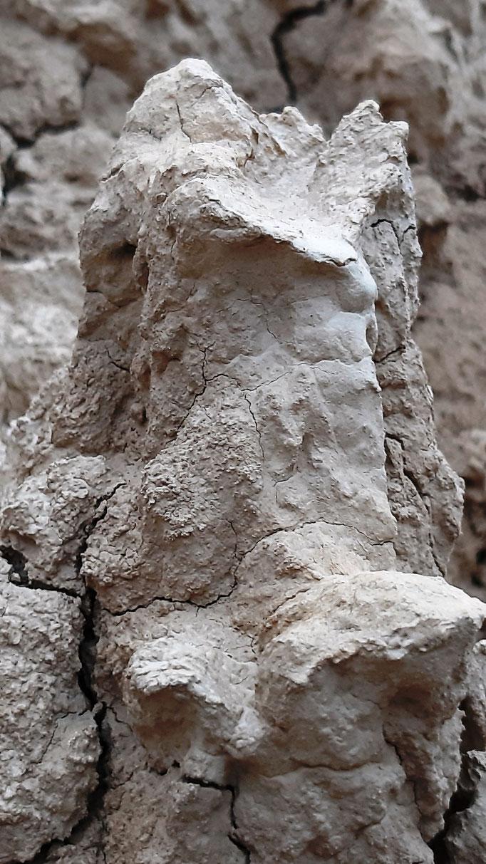 detalle de erosion en bardenas 21