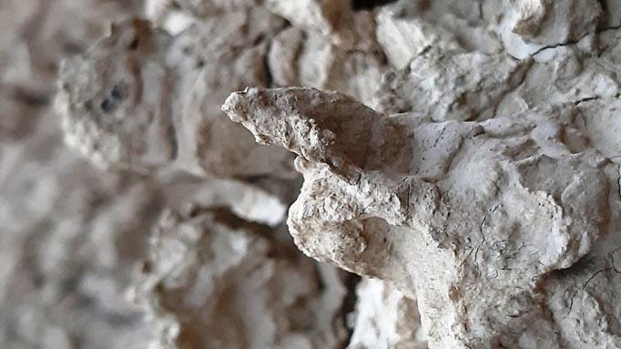 detalle de erosion en bardenas 19