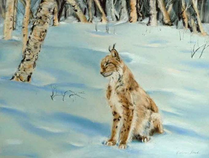 Luchs im Schnee,Pastell,40x50cm,(c)D.Saul 2012