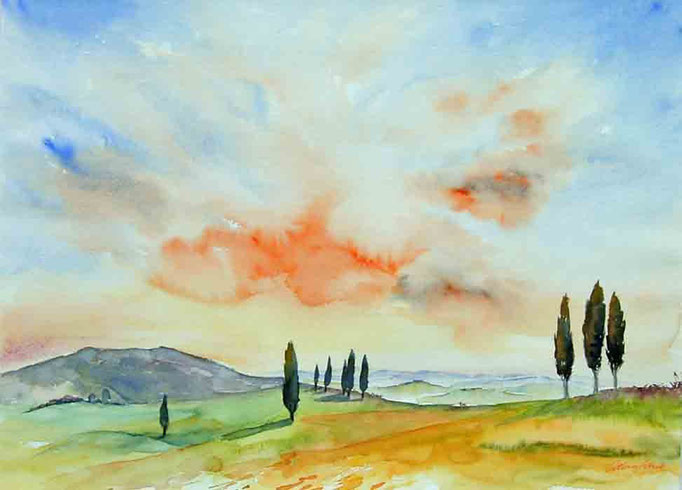 Zypressen bei Volterra 50x60cm, (c)D.Saul 2011