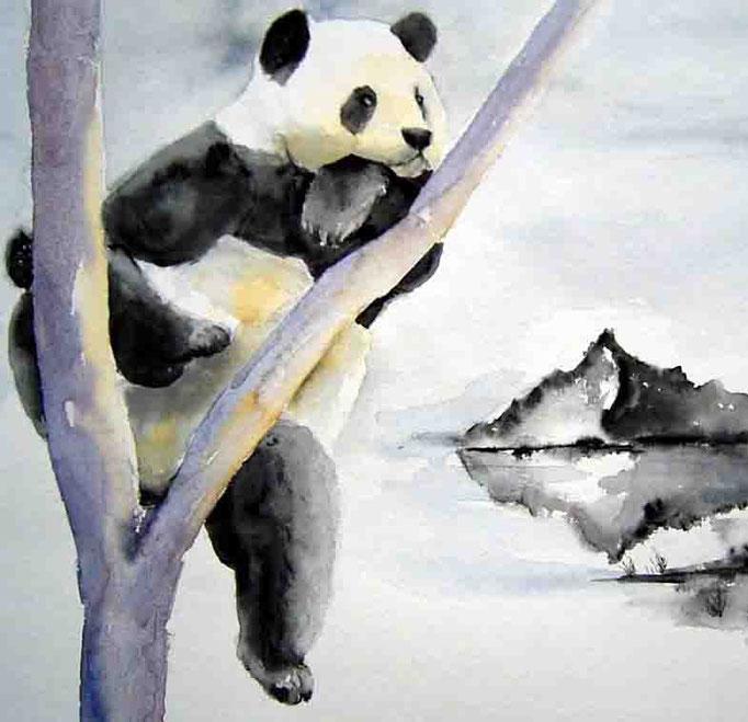 Panda 40x50 verkauft
