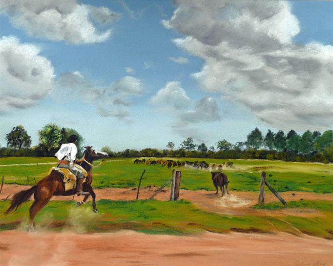 """""""La Pampa"""" Pastell 39x49cm (c)D.Saul 2014, Ref. H.Heeren"""