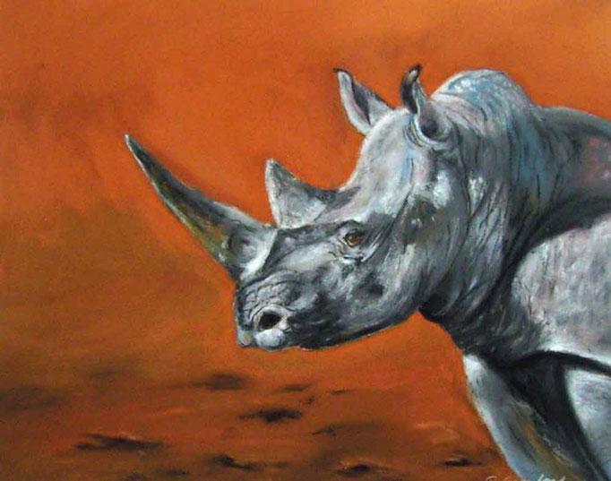 Rhinozeros,Pastell 40x50cm,(c)D.Saul 2011