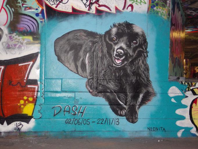 Dash, South Bank, 2013