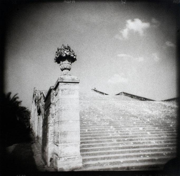 Versailles, Escalier des cent marches, 2009, tirage au charbon, bichromie, atelier Fresson, © Annick Maroussy