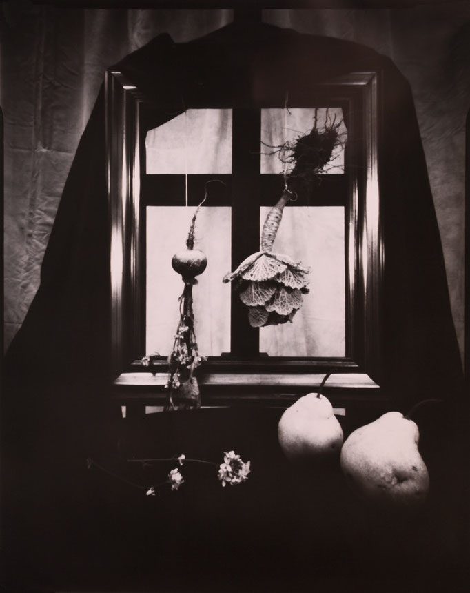 """""""Nature silencieuse aux poires"""", Sténopé, Positif direct sur Imago, Révélation Caffenol, Épreuve unique, 4x5 inches, encadrement 30x30cm, 1/1, 2015, ©Annick Maroussy Amy"""