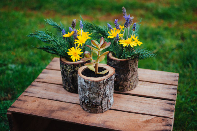 Natural Wood Log Planter Pots by jaccobmckay