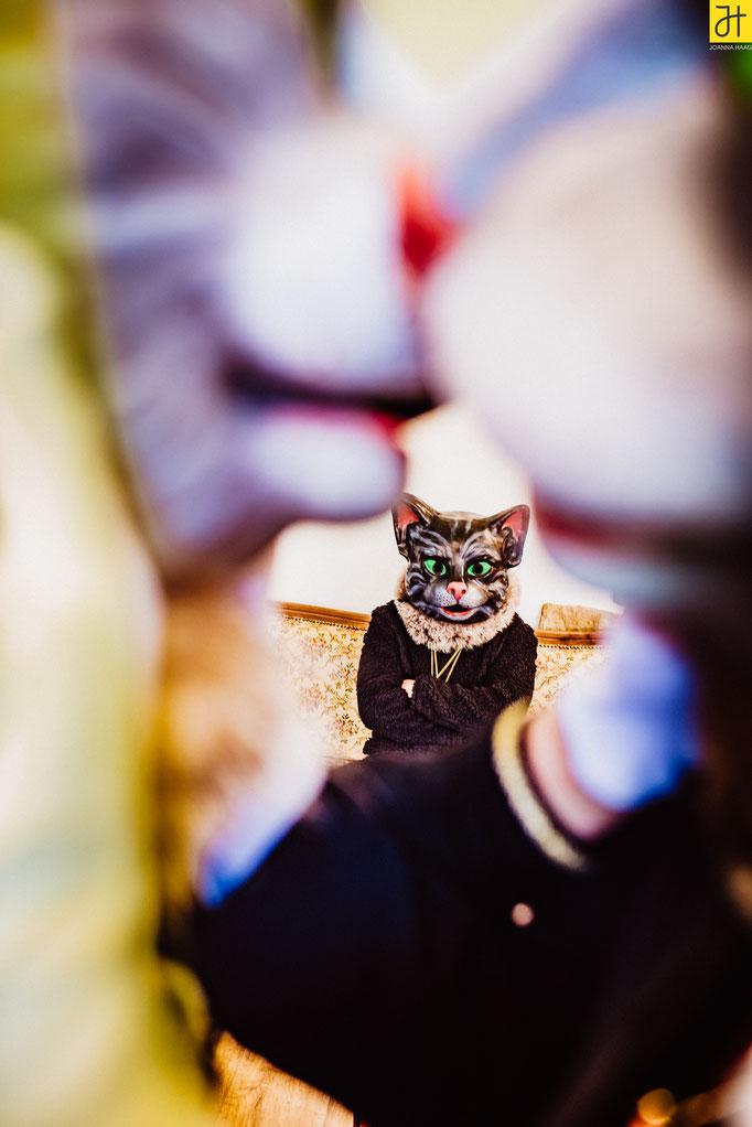 © JOANNA HAAG / #Fotoshooting #Fotoprojekt #Katze #Kater #Verein #Fasnet #Villingen