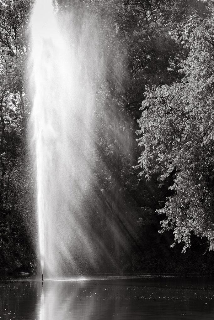 Springbrunnen auf dem Killesberg, Stuttgart