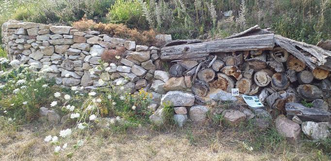 Steinmauer für Bienen und andere Tierarten