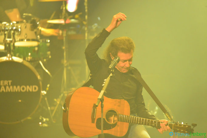 Albert Hammond - Copyright © - Thomas Freiberg - All Rights reserved.