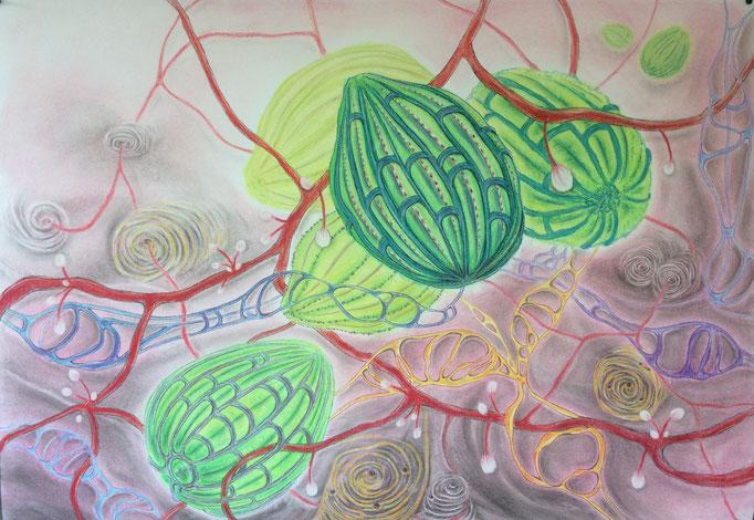 Watergeheimen III, 2020   70x100cm   Pastel, houtskool, Siberisch krijt op papier