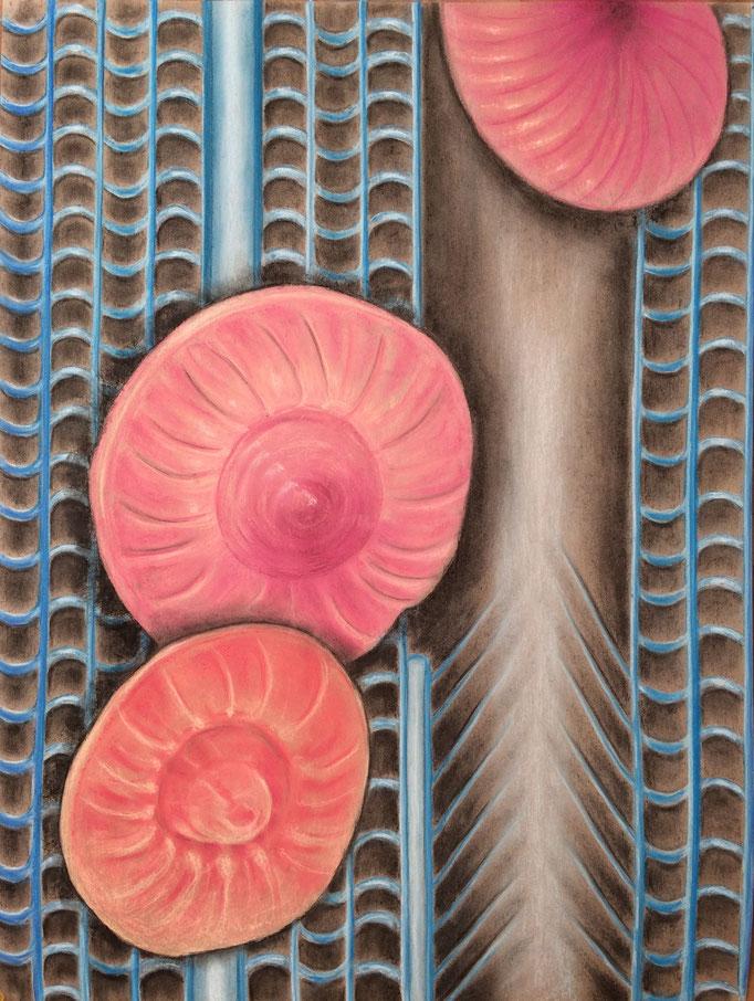 Studie van drie kleine wezens, 2020   80x60cm   Pastel, houtskool, Siberisch krijt op bruin papier