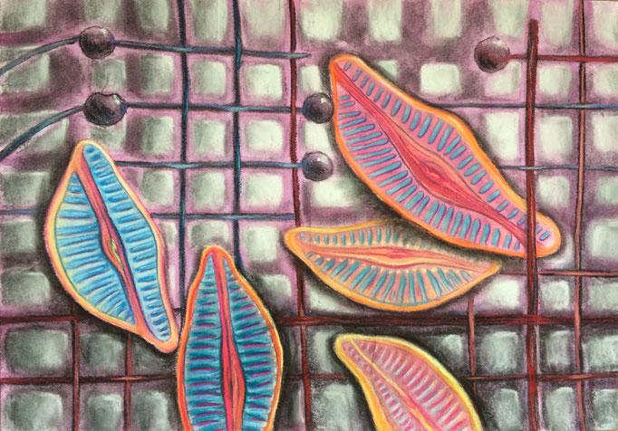 Studie op raster, 2020   35x50cm   Pastel, houtskool, Siberisch krijt, waterverf op papier