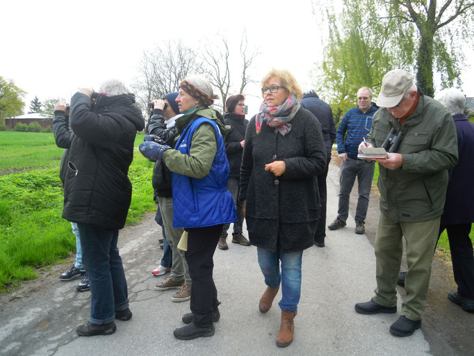Köhlinger Wald, Heessen