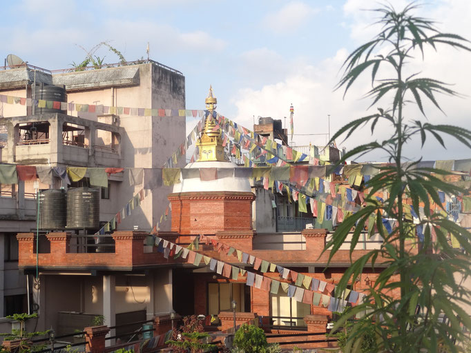Kathmandou, Nepal