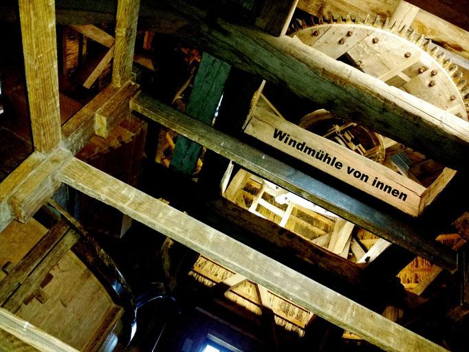 Freilichtmuseeum Kommern - Windmühle