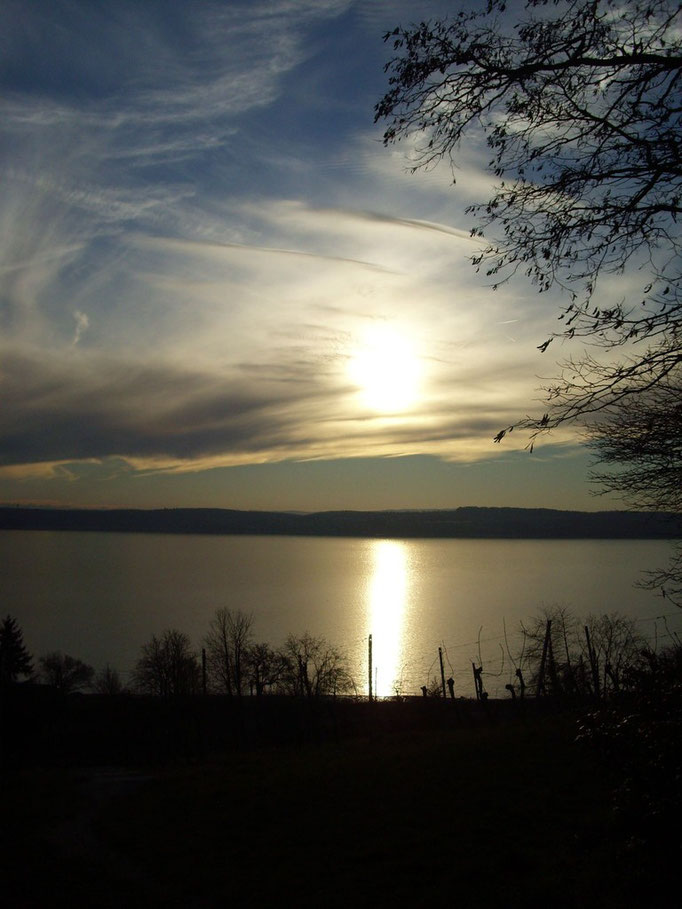 Am Bodensee