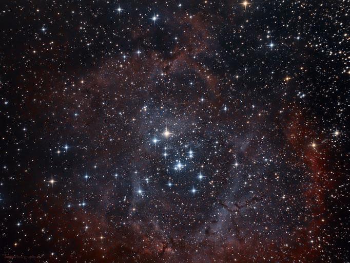 Rosettennebel mit Sternhaufen NGC2244 im Sternbild Einhorn. Entfernung ca.4500 Lichtjahre. Aufgenommen am 1.April.2013