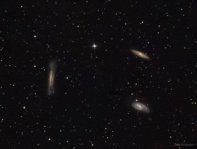Leo Triplet (M66 Gruppe) bestehend aus M65,M66 und NGC3628 im Sternbild Löwe. Entfernung 35 M. Lichtjahre. Aufgenommen am 20.3.2014