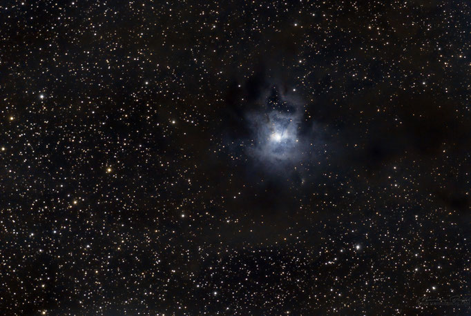 Irisnebel (NGC7023) im Sternbild Kepheus. Entfernung ca. 1300 Lichtjahre. Aufgenommen am 15.6.2017