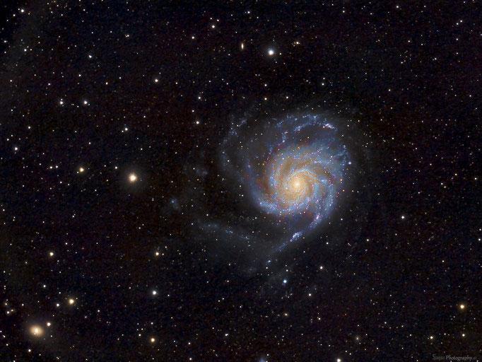Feuerradgalaxie (M101) im Sternbild Großer Bär. Entfernung ca. 22.Millionen Lichtjahre. Aufgenommen am 18,3,2015