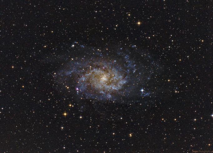 Dreiecksgalaxie (M33) im Sternbild Dreieck. Enrfernung cirka 2.8 M. Lichtjahre Aufgenommen September 2014