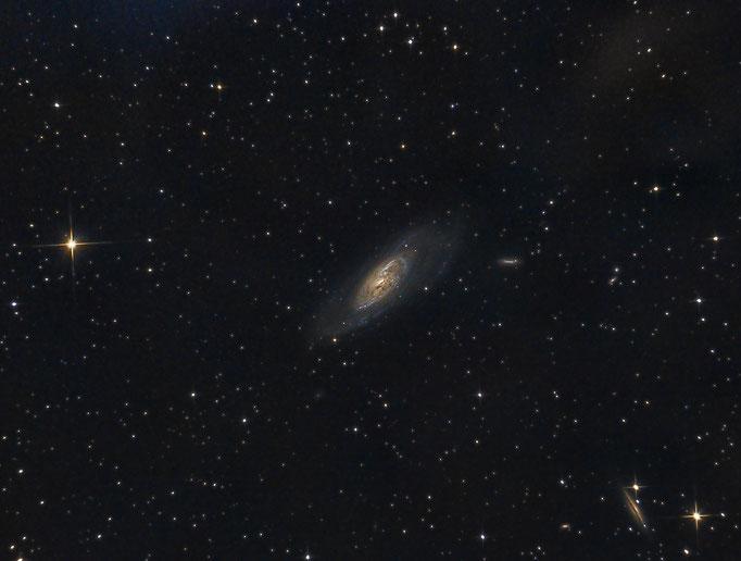 M106 NGC4217 und NGC 4248 im Sternbild Jagdhunde. Aufgenommen am 12.3.2014