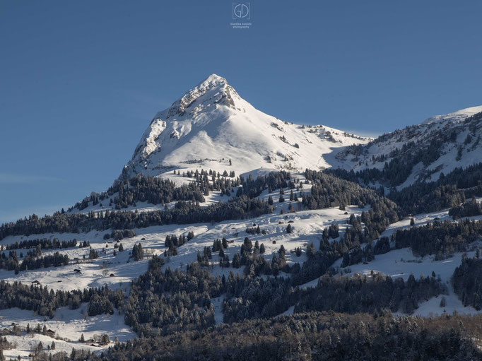 Fronalpstock im Winter