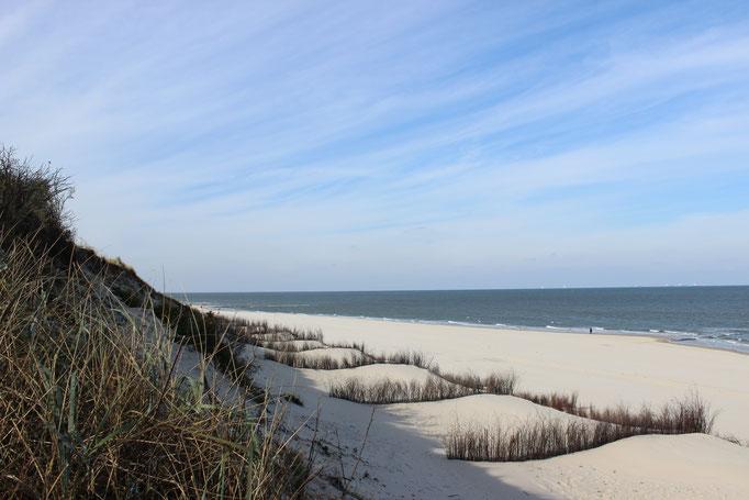 Strand Sonne Sommerurlaub