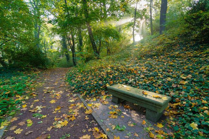 Herbst an der Unterburg Giebichenstein