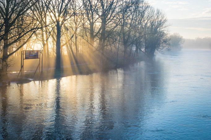 Sonnenaufgang über dem Saaleufer an der Ziegelwiese