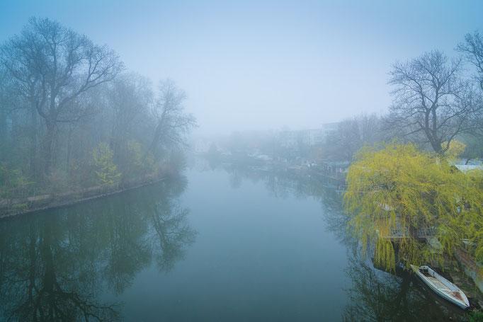 Nebel über Rabeninsel und Saale