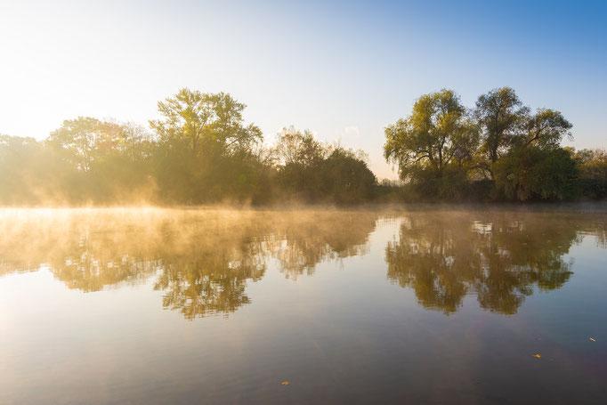 Nebel auf der Saale im Herbst am Pfingstanger