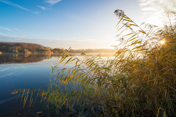 Sonnenaufgang am Hufeisensee