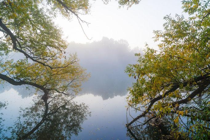 Sonnenaufgang mit Nebel am Kanal