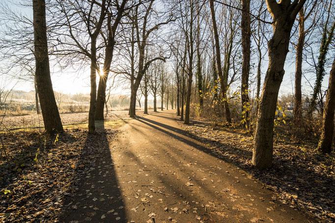 Winter an der Elisabeth-Saale