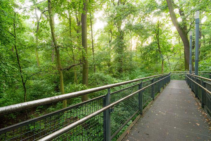 Treppe an der Rabeninselbrücke