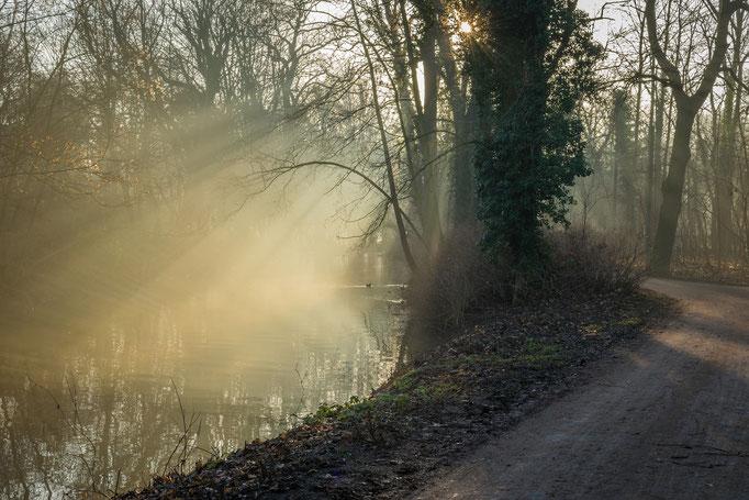 Wintermorgen am Mühlgraben