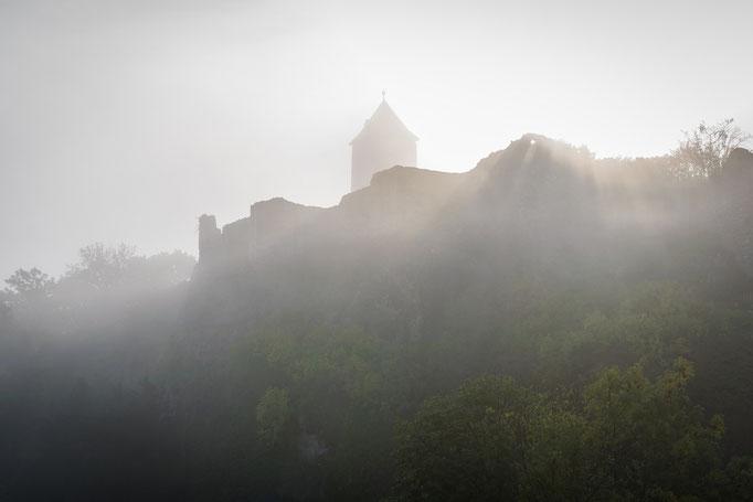 Burg Giebichenstein im Nebel