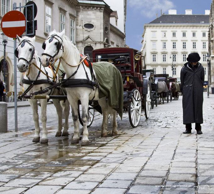 Fiaker in Wien, booking Vienna, günstige Hotels in Wien, Hotel Vienna buchen