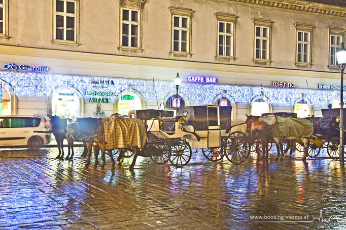 Wiener Leben, booking Vienna, günstige Hotels Wien, Hotel Wien im Zentrum buchen