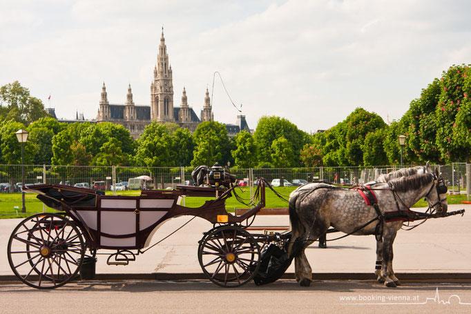 Heldenplatz im Zentrum von Wien, booking Vienna, günstige Hotels in Wien