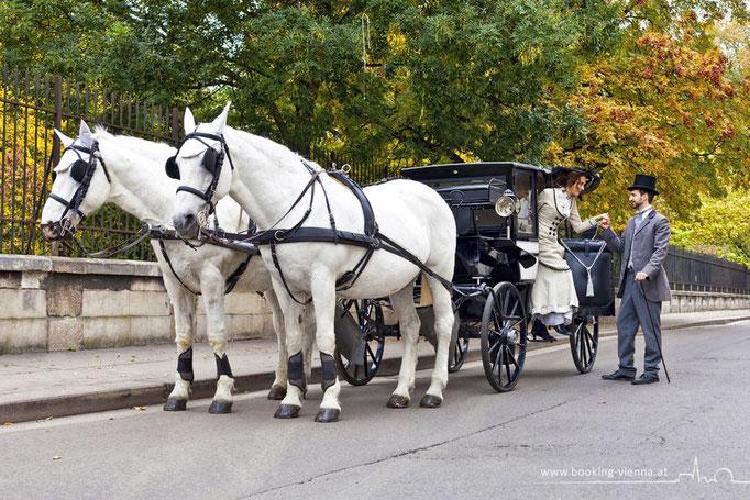 Pferde Tradition, booking Vienna, günstige Hotels Wien, Hotel Wien im Zentrum buchen