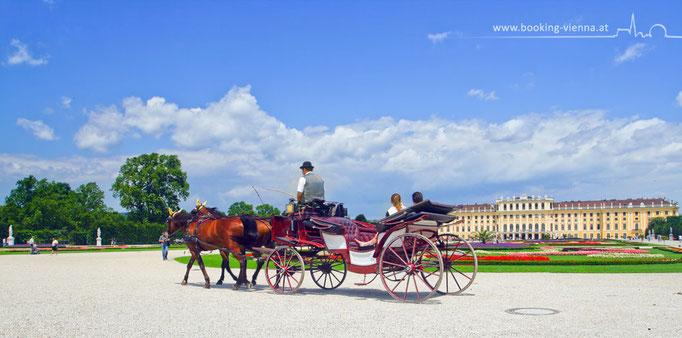 Fiaker-Fahrt im Frühling, booking Vienna, günstige Hotels Wien, Hotel Wien im Zentrum buchen