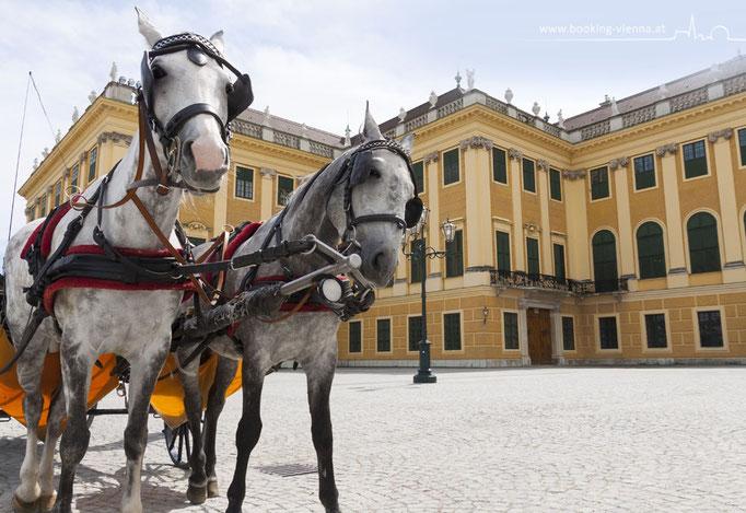 Touristen in Wien, booking Vienna, günstige Hotels Wien, Hotel Wien im Zentrum buchen